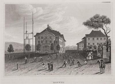 Hofwyl, Meyer, oceloryt, 1850