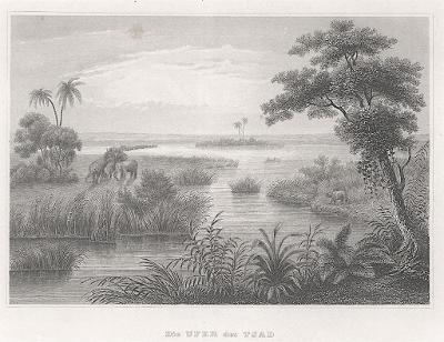 Čad,  Meyer, oceloryt, 1850