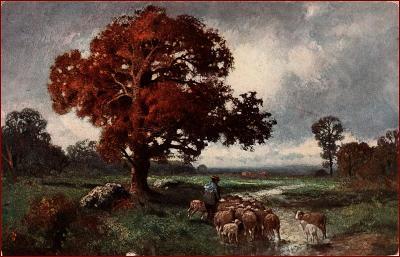 Pasák * ovce, stádo, zvířata, strom, podzimní krajina * M5108