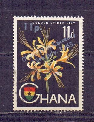 Ghana - Mich. č. 56
