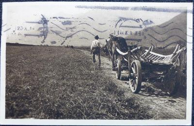 Tvrdý život hospodáře - pohled z roku 1919