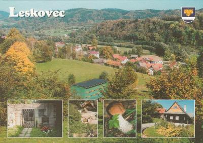 LESKOVEC