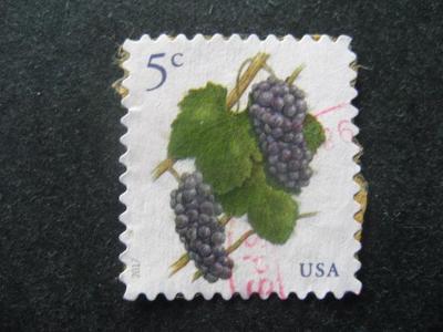 USA motivy Flora ražené od korunky
