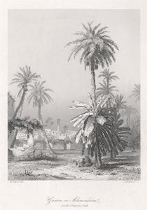 Alexandrie, Payne, oceloryt 1860