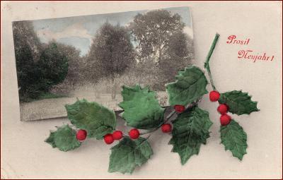 Nový rok * větvička, cesmína, krajina, koláž, gratulační * X029