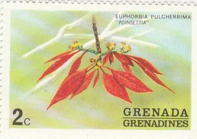 Grenada - Grenadiny - na doplnění - flóra