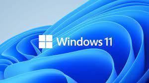 MS Windows 11 Professional elektronická licence