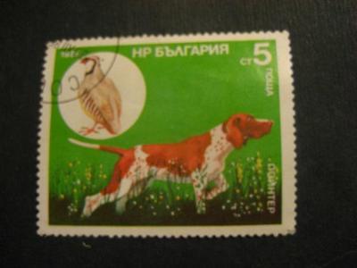 Bulharsko fauna ražené od korunky