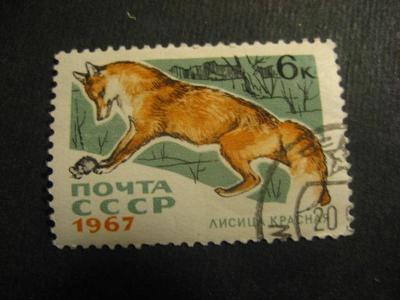 SSSR fauna ražené od korunky