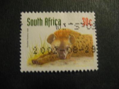 Jižní Afrika fauna ražené od korunky