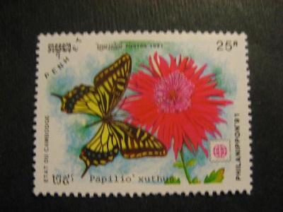 Kambodža fauna motýl ražené od korunky