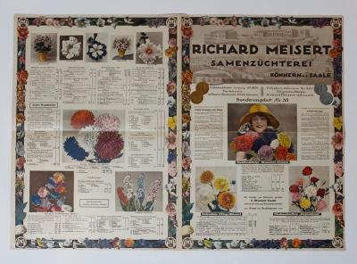 Ceník - semena zeleninová a květinová R. Meisert