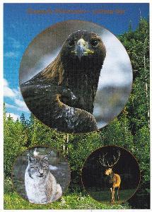 ZOOpark Chomutov - zvířata hor