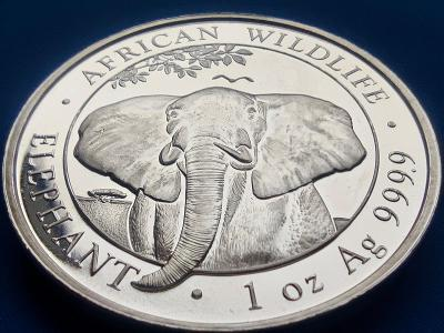 ❗STŘÍBRNÁ MINCE 1 OZ 999AG - 31.1GR - AFRICAN WILDLIFE - SLON - 2021