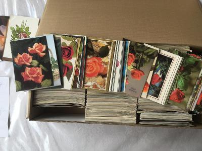 Sbírka žánrových pohlednic růže VF 2175ks