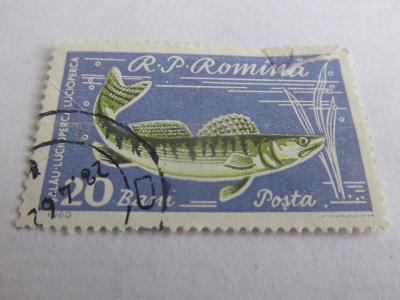Prodávám známky Rumunsko 1960, Ryby