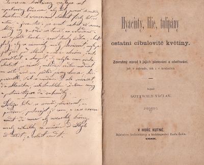 Kniha Hyacinty, lilie, tulipány.., V. Gottwald, 1888