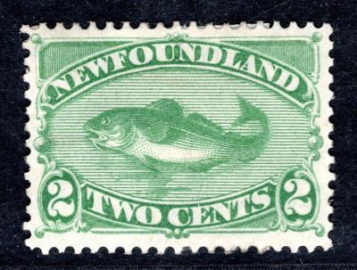 Anglické Kolonie/Newfoundland ; 2 centy zelená , silnější stop/2671/13
