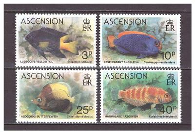 "Ascension 1980 kompletní série ""Fish (1980)"""