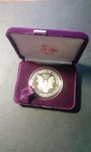 USA 1 Dollar 1989 - American Eagle - 1oz fine silver in orig. etui