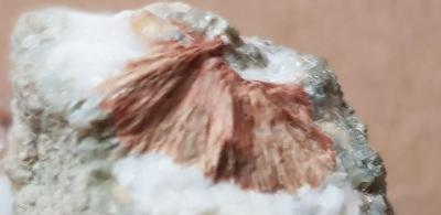 Minerály ČR Svojanov