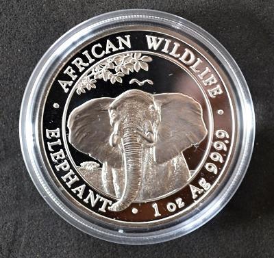 Stříbrná investiční mince  1 oz Somalia Elephant 2021