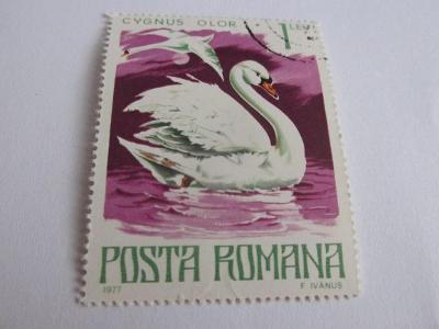 Prodávám známky Rumunsko 1977, Chráněná zvířata - Labutě