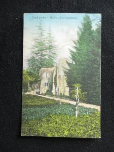 Malé Topolčianky - Čiasť parku, pr. 1924