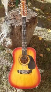 Kytara 12 Str. BULL