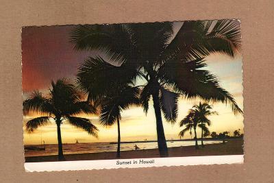 HAWAII...USA...STAV DLE FOTA (9)