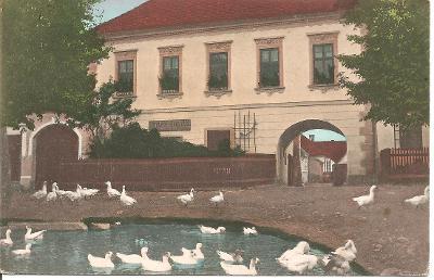 Bosonohy Brno