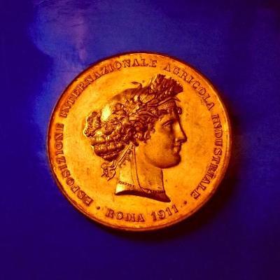 Císařství Stará bronzová pozlacená medaile 60mm 1911 Výstava ,těžká