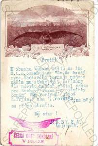 V. slet všesokolský Praha 1907