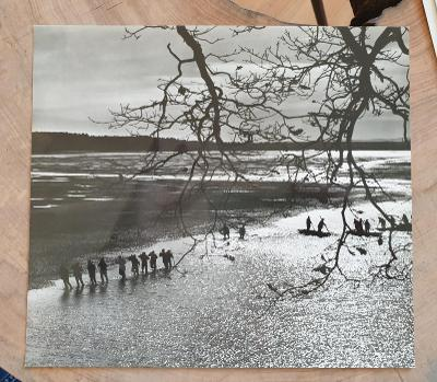 Stará fotografie signace Miloslav Stibor - výlov, 26,5 x 23,5cm
