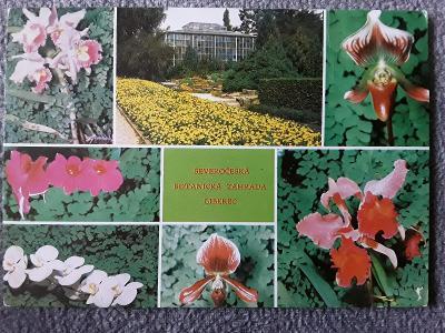 Pohlednice Botanická zahrada LIBEREC