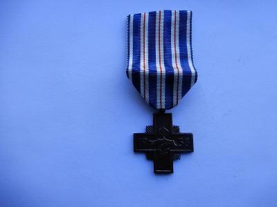 Pamětní odznak NSG-Kříž za věrné služby