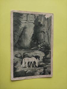 Pohlednice umělecká - Schwind - skála, kůň, koňe, krajina