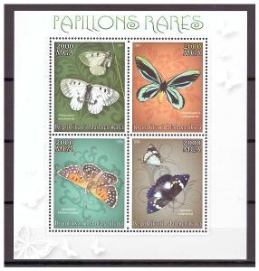 Madagaskar 2014 - motýli