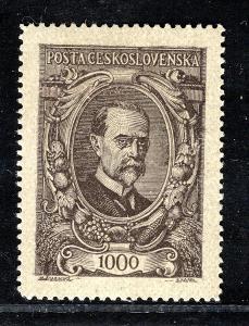 Masaryk 1920/142, TGM, hnědá 1000 h/19.60096