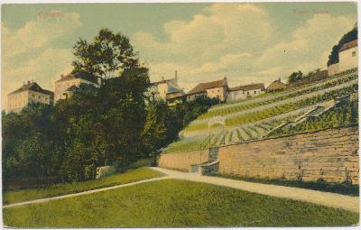 57 - Rychnovsko, Opočno, pohled na vinice Yvona, cca 1908