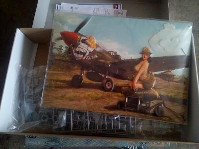 P-40 od Eduarda