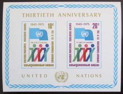OSN New York 1975 Výročí OSN Mi# Block 6 1022