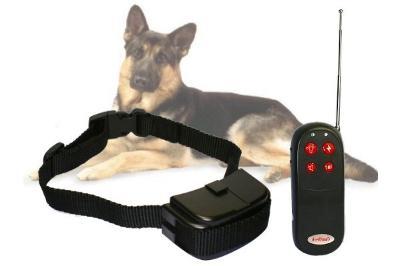 Tréninkový obojek pro psa Nové