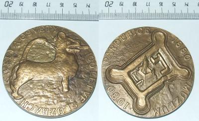 Medaile - Město - Pardubice
