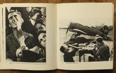 Seymour - Umělecká fotografie 1966 - (H318)