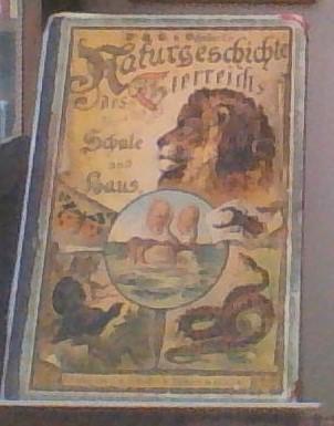 Schubert:Naturgeschichte des Tierreichs