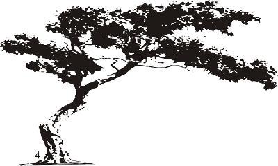 Strom samolepka na zeď 250x200 cm BIG velká dekorace na zeď 14 vzorů