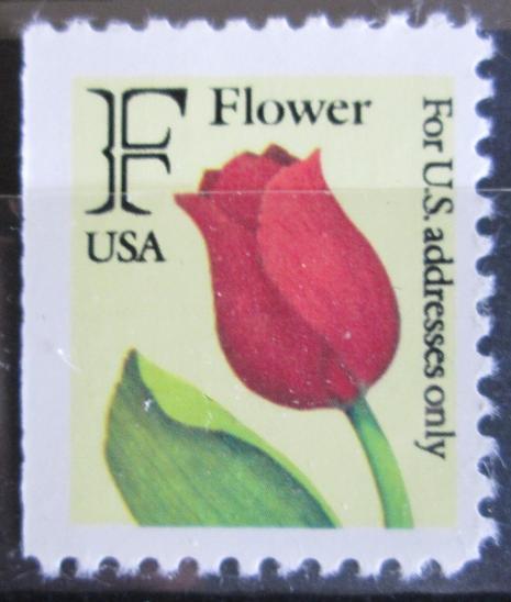 USA 1991 Tulipán Mi# 2116 G 0036 - Filatelie