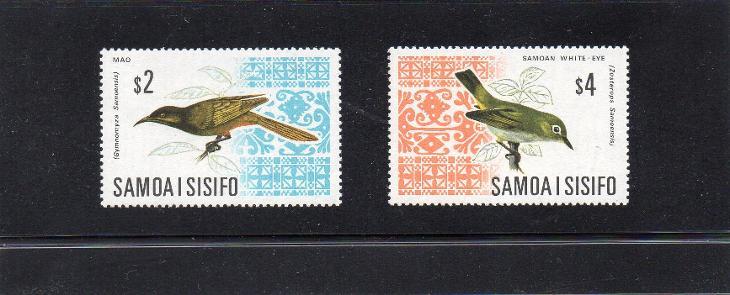 Sání ptáků