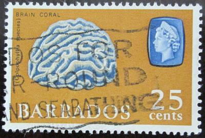 Barbados 1966 Korál Mi# 244 Y 0564